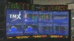 Investors should review portfolios this fall