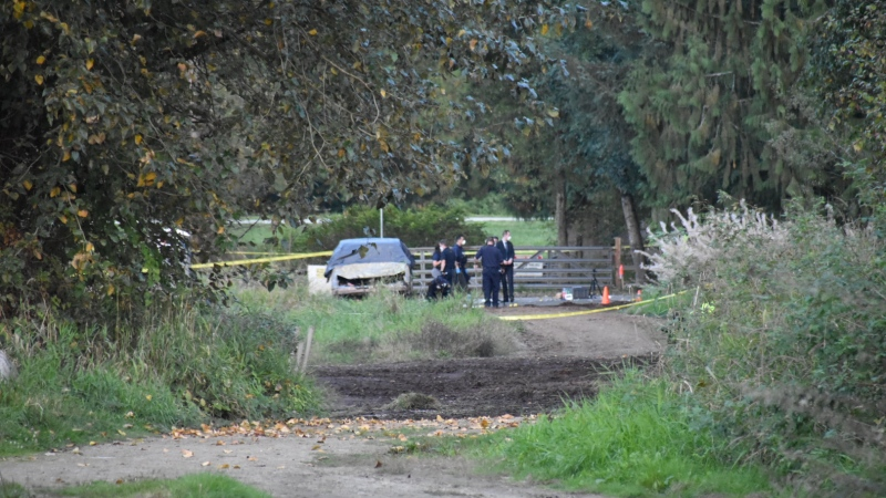 Homicide investigators have been called to Maple Ridge after a body was discovered inside a burning pickup truck in the city early Saturday morning. (CTV)