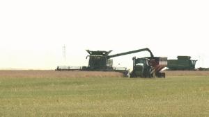 harvestpic