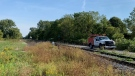 Police say a pedestrian was hit by a VIA Rail along the CN Railway on Park Avenue West near Wedgewood Avenue in Chatham, Ont., Tuesday, Sept. 27, 2021. (Chris Campbell / CTV Windsor)