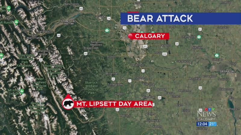 Grizzly attacks sends man to hospital