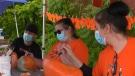 Orillia students paint rocks orange