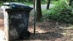 A garbage can in Stanley Park is filled to its brim, and a local resident is concerned its contributing to the coyote issues plaguing the park. (Contributed)