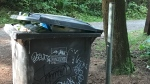 stanely park garbage
