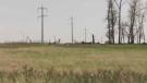 Rural Albertans push back against COVID restrictio