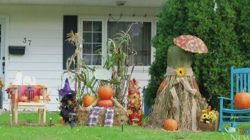 As part of Riverview's annual harvest festival, over 100 residents have taken part in the town's Pumpkin Palooza contest which ran from Oct. 1-3.