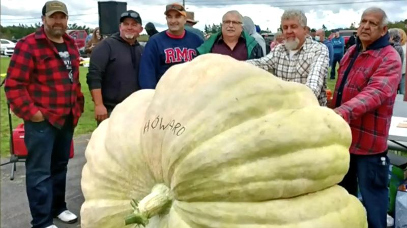1,956-lbs pumpkin in Cape Breton sets Atlantic Can