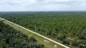 Pictured is the Carlton Reserve in Venice, Fla. on October 8, 2021. (CNN)