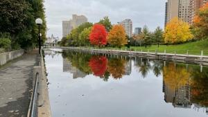 A cloudy start to Thanksgiving along the Rideau Canal. (Josh Pringle/CTV News Ottawa)