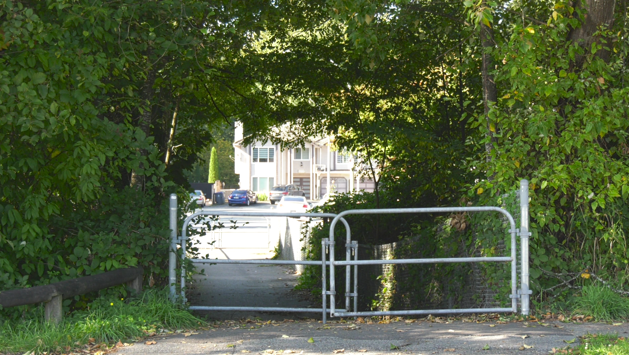 Surrey Mounties say there was an alleged abduction attempt in a green space between Edinburgh Drive and 132 Street.