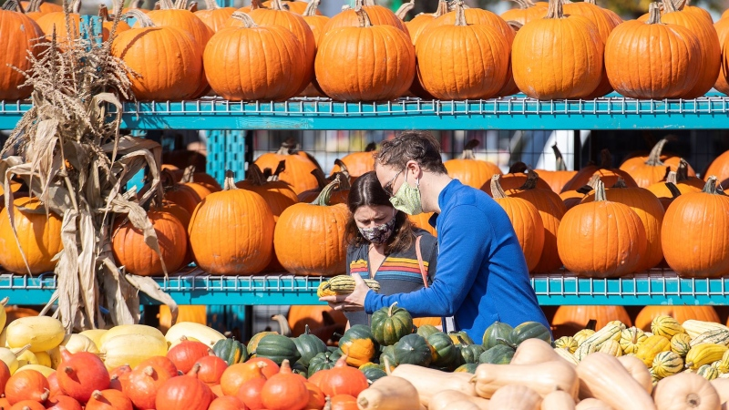People wear face masks as they look at pumpkins at a market on warm fall day in Montreal, Saturday, Oct. 9, 2021. THE CANADIAN PRESS/Graham Hughes