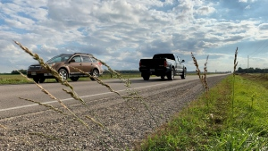 Vehicles travel along Calvert Drive in the Township of Adelaide-Metcalfe near Strathroy, Ont. on Tuesday, Oct. 12, 2021. (Bryan Bicknell / CTV News)