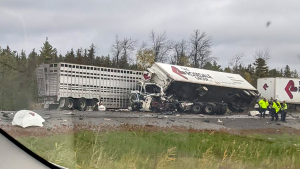 Several tractor trailers collided in the westbound lanes of Highway 401 near Gardiners Road in Kingston, Ont. Oct. 13, 2021. Two drivers were killed. (Submitted)