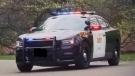 An OPP cruiser has its lights flashing. FILE IMAGE (CTV News)