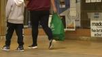 Plastic bag ban takes effect in Prince Albert
