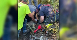 Rescue crews save dog trapped in storm drain