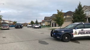 WRPS on scene in Kitchener after reports of a nine-year-old boy being hit by a vehicle. (Dave Petitt/CTV Kitchener) (Oct. 14, 2021)