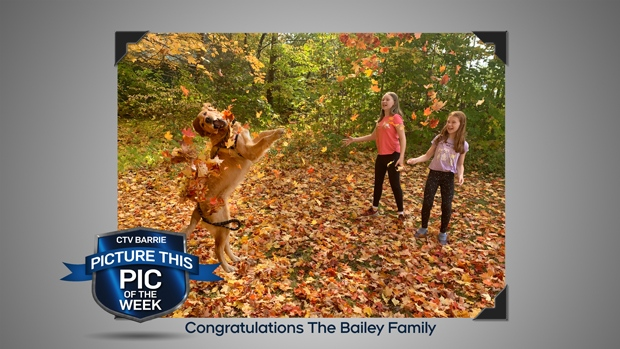 Pic of the Week: Fall colours