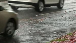 Rainfall warning for B.C.'s Lower Mainland