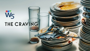 W5: The Craving