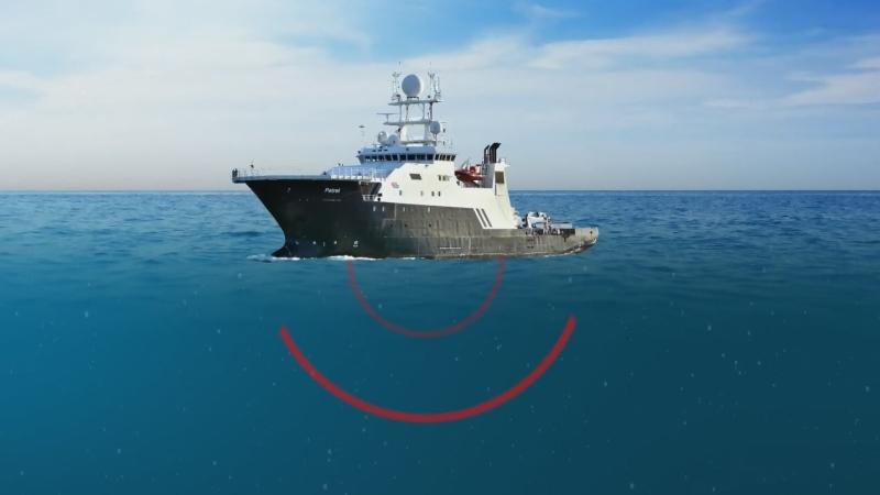 Researchers criticize UBC study on orca prey