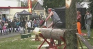 Cranberry festival returns