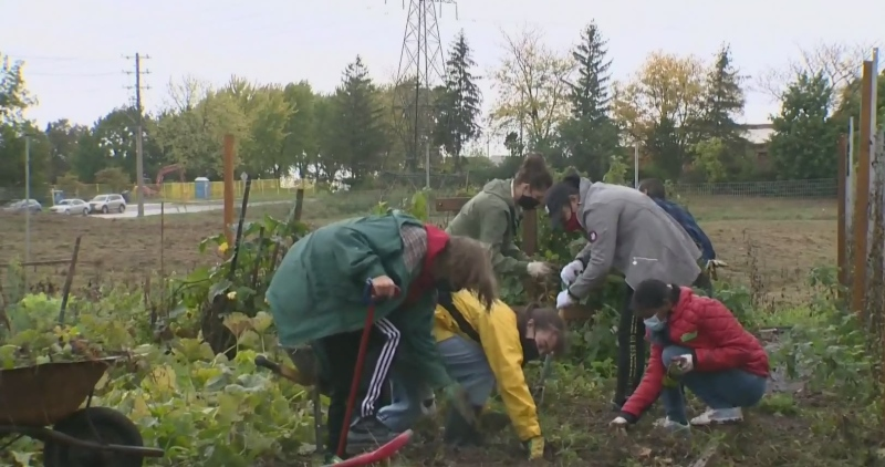 'Project Serve' helps U of G students give back
