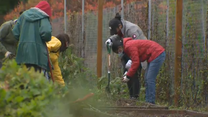 Project Serve helps U of G students give back