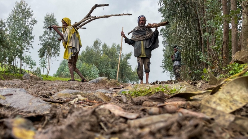 Villagers carry wood on a path near the village of Chenna Teklehaymanot, in the Amhara region of northern Ethiopia, on Sept. 9, 2021. (AP)