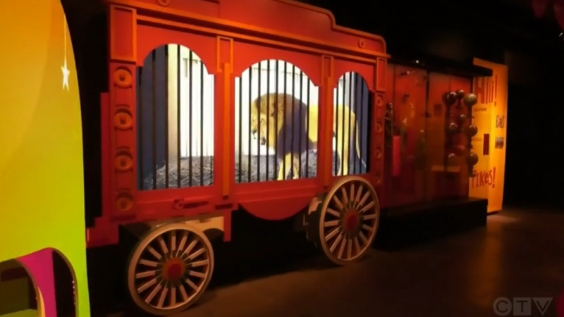 A new exhibit at Montreal's Pointe-a-Calliere Museum shows a history of circus