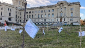 On the northwest lawn of the Legislative Building, Clinton Ackerman installed 127 crosses to represent those who died of COVId-19 between July 11 and Oct. 1, 2021. (Gareth Dillistone/CTV News)