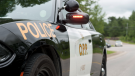 An OPP cruiser is seen in this file image. (Supplied/OPP)