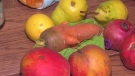 Growing calls to end food waste in Canada