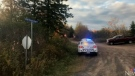 RCMP confirm a call came in around 3:30 Monday afternoon, reporting that a young child was trapped under a large log.