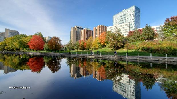 Rideau Canal near Uottawa campus in October. (Mohsen/CTV Viewer)