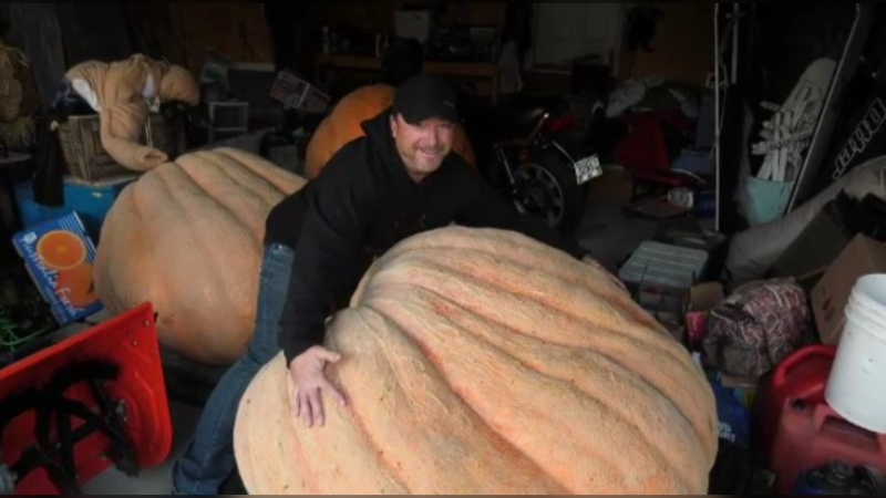 Chris Okell with a giant pumpkin.