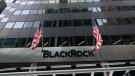 Flags fly at BlackRock headquarters in New York, on Jan. 13, 2021. (Mark Lennihan / AP)