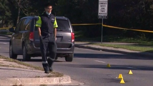 Pedestrian struck in Toronto