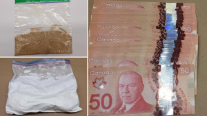 Ottawa police seized over half a kilogram of fentanyl and more than 40 grams of heroin during an investigation targeting an Orleans park. (Photo courtesy: Ottawa Police Service)