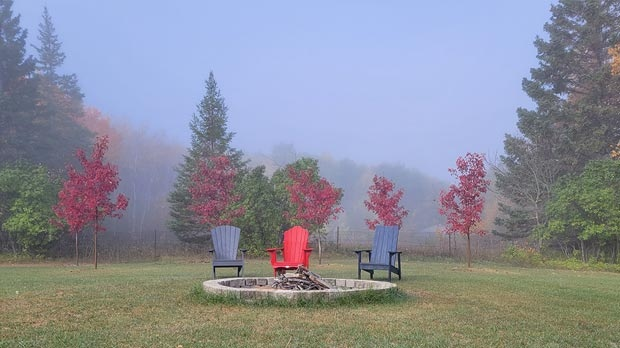 Colourful fall morning north of Birds Hill Park. Photo by Ken Jones.