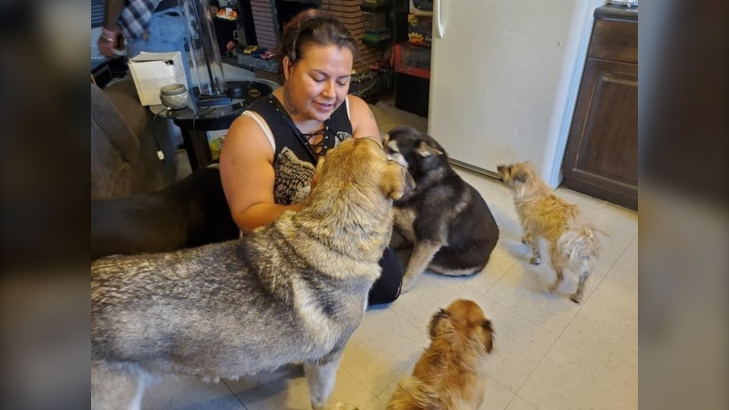 Katie Pchajek, seen in an undated picture, at a dog rescue clinic she helped (Supplied: Marilyn Courchene)
