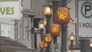 The Great Pumpkin Walk is on in Miramichi, N.B., with just over 100 pumpkins displayed along the downtown Chatham business district for locals to enjoy.