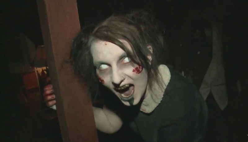 Maritimes split on surviving zombie apocalypse