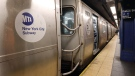 """New York Mayor Bill de Blasio said Wednesday he was """"troubled"""" by a video showing two unmasked NYPD officers removing a masked commuter from a subway station this week, and he said he expects discipline for the officers involved. (Gary Hershorn/Corbis News/Getty Images/CNN)"""