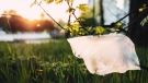 A plastic bag is seen blowing in the wind. (Pexels)