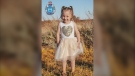 Authorities are searching for four-year-old Cleo Smith, who went missing from Blowholes campsite in Macleod, Australia. (Source: Western Australia Police Force via CNN)