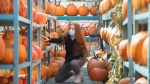 A young woman looks at pumpkins at a market on warm fall day in Montreal, Saturday, Oct. 9, 2021. THE CANADIAN PRESS/Graham Hughes
