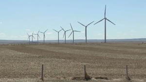 The Fraser Institute has published a paper indicating that if Alberta converted its power generation away from fossil fuels, it would result in huge added costs. (File)
