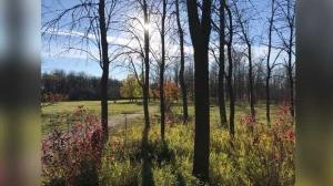 Beautiful Henteleff Park. Photo by Carol Johnston.