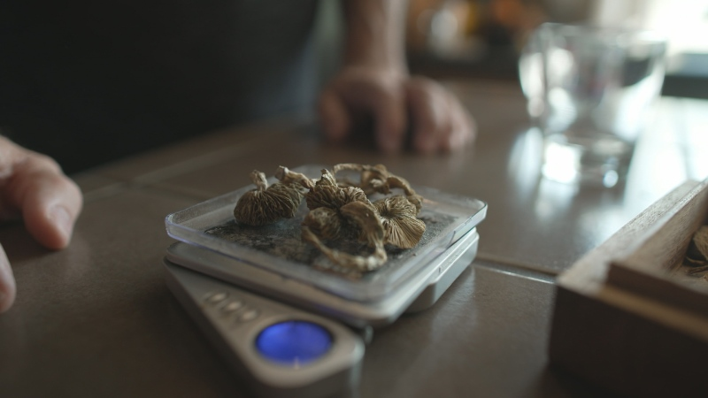 Clinical trials with psilocybin have shown an improvement in symptoms for patients battling a range of disorders including depression and anxiety.